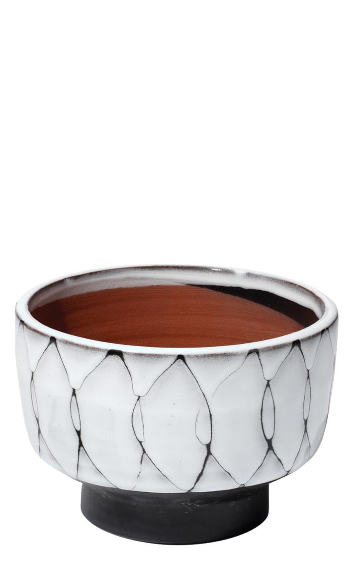 7stri vecr striaevessels cream darkgrey medium%20copy